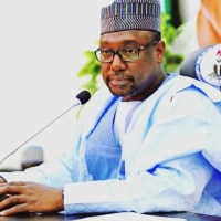 Why Niger Governor's May Day claims may not be true!